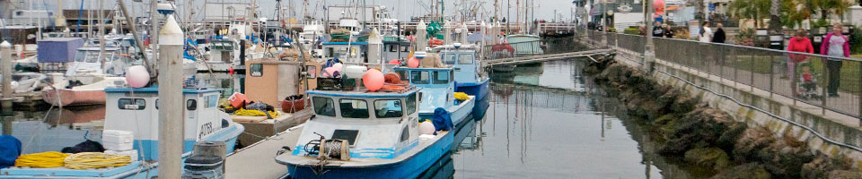 Eat U.S. Seafood - Know your fisherman. Know your fish. It's easier than you think.