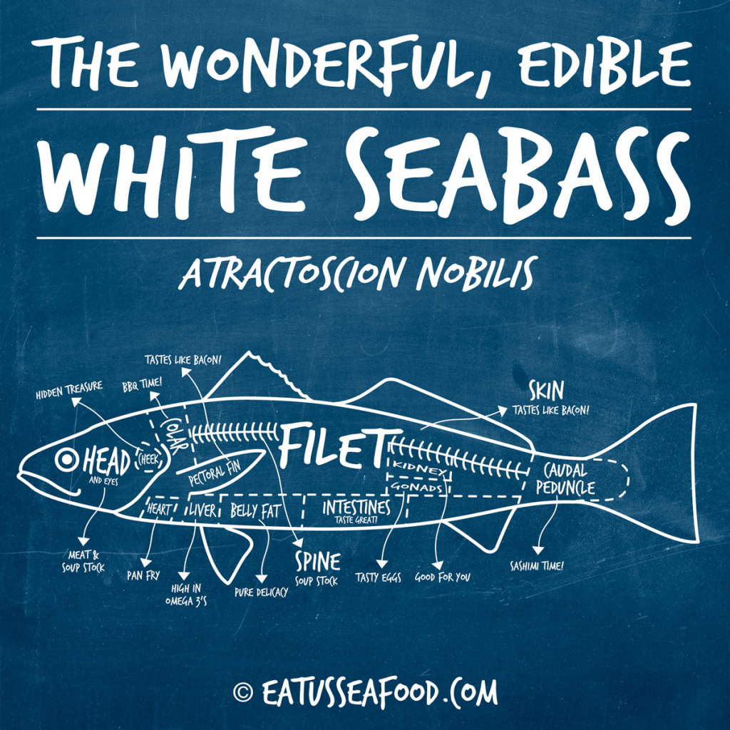 eatusseafood_white_seabass